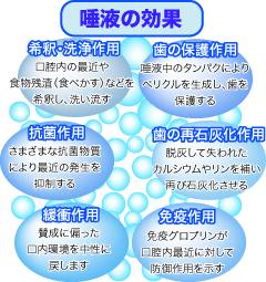 唾液の効果vention4