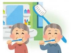 趣味歯みがき (2)